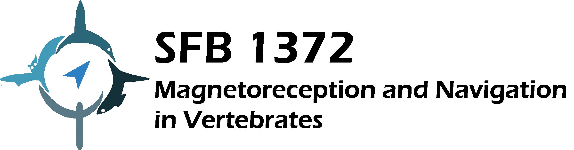 sfb1372